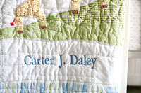 Carter Daley - Newborn